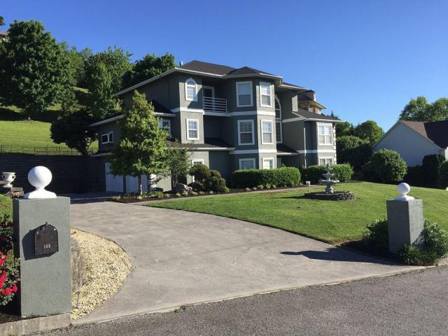 119 Lexington Place, Sevierville, TN 37862 (#1087846) :: Shannon Foster Boline Group