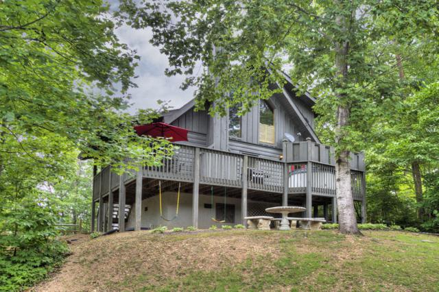 3521 Sugar Maple Loop Rd, Sevierville, TN 37862 (#1087887) :: Billy Houston Group