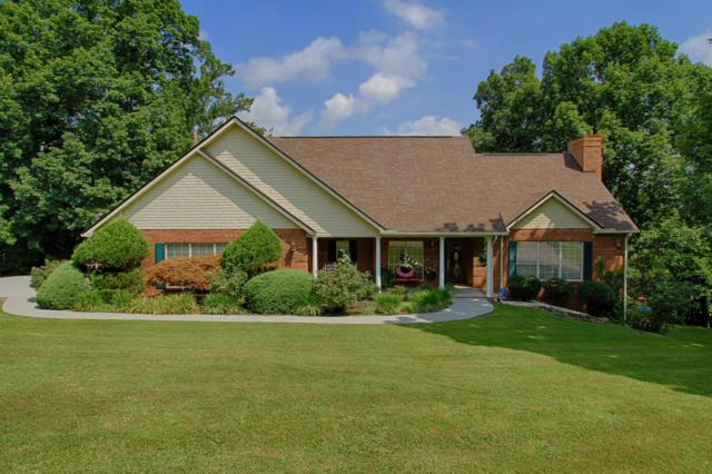 2802 Donielle Drive, Strawberry Plains, TN 37871 (#1087888) :: Billy Houston Group
