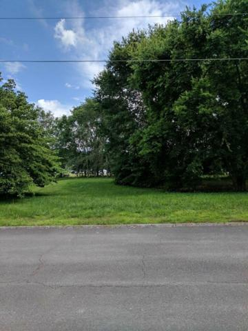 Lot 26 Chapman Overlook Drive, Seymour, TN 37865 (#1087890) :: Billy Houston Group