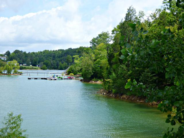 Lot 22 Cypress Drive, Dandridge, TN 37725 (#1087896) :: Billy Houston Group