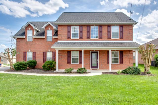 7915 Knowledge Lane, Knoxville, TN 37938 (#1087908) :: Billy Houston Group