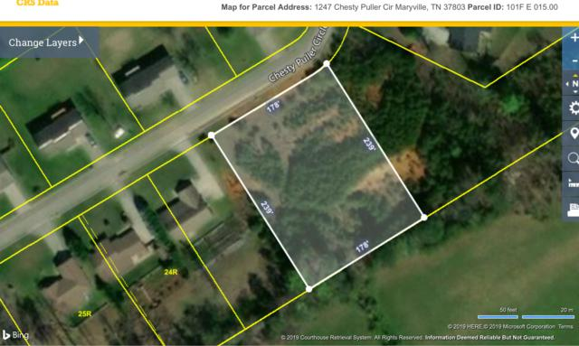 1247 Chesty Puller Circle, Maryville, TN 37803 (#1087947) :: Billy Houston Group