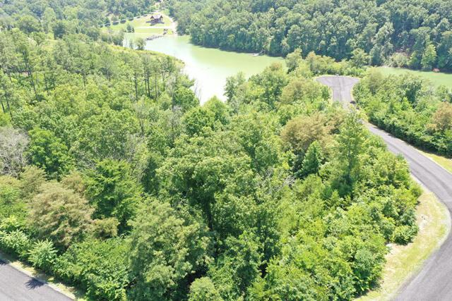 Lot 25 Stone Bridge Drive, Dandridge, TN 37725 (#1088136) :: SMOKY's Real Estate LLC