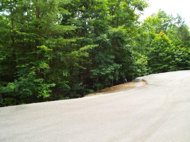 Buck Board Lane, Sevierville, TN 37862 (#1088182) :: Shannon Foster Boline Group