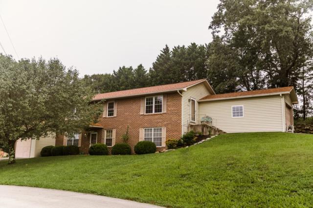 203 Farmington Trail Tr, Kingston, TN 37763 (#1088184) :: SMOKY's Real Estate LLC