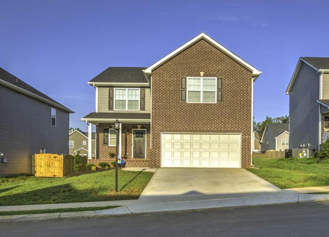 7344 Ladd Rd, Powell, TN 37849 (#1088208) :: Shannon Foster Boline Group