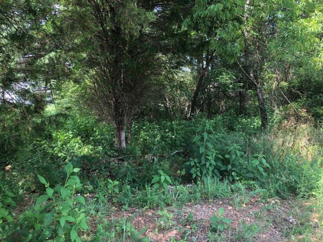 619 Tanasi Lane, Loudon, TN 37774 (#1088221) :: Shannon Foster Boline Group