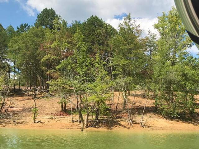 Lot 55 Sunset Harbor Drive, Dandridge, TN 37725 (#1088277) :: SMOKY's Real Estate LLC