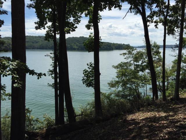 231 Tecumseh Way, Loudon, TN 37774 (#1088324) :: Shannon Foster Boline Group