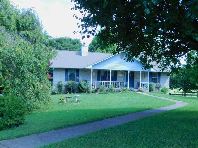 6215 Nails Creek Rd, Seymour, TN 37865 (#1088446) :: SMOKY's Real Estate LLC