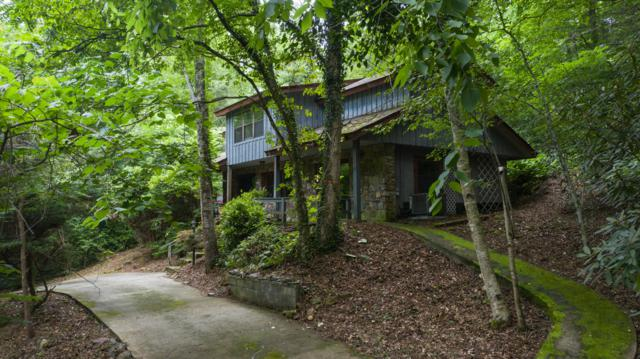 2224 Cove Creek Drive Drive, Sevierville, TN 37862 (#1088475) :: SMOKY's Real Estate LLC