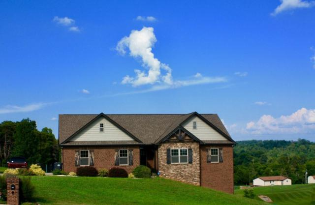 2864 Sagegrass Drive, Louisville, TN 37777 (#1088480) :: SMOKY's Real Estate LLC