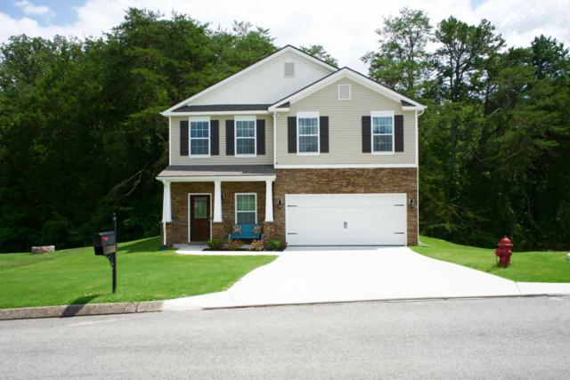 5308 Golden Eagle Lane, Corryton, TN 37721 (#1088665) :: Shannon Foster Boline Group