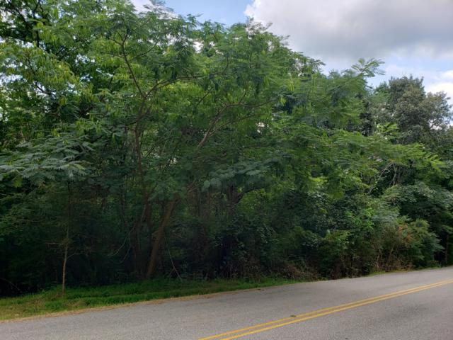 Eastwood Rd, Ten Mile, TN 37880 (#1088761) :: Realty Executives