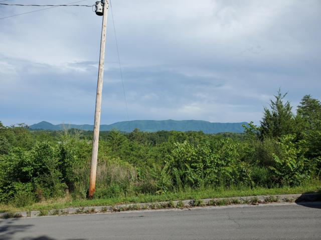 Lot 21 Rupert Drive, Dandridge, TN 37725 (#1089233) :: Realty Executives
