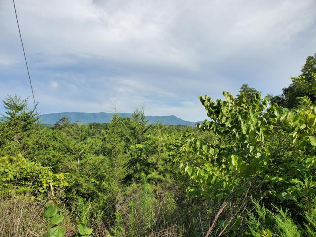 Lot 24 Rupert Drive, Dandridge, TN 37725 (#1089238) :: Realty Executives