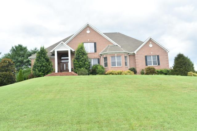 143 Vista Lane, Seymour, TN 37865 (#1089272) :: Shannon Foster Boline Group