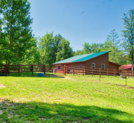 3 E Ridge Rd, Allardt, TN 38504 (#1089310) :: Shannon Foster Boline Group