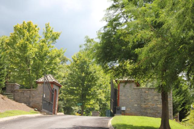 57 Stone Harbor Drive #57, Dandridge, TN 37725 (#1089816) :: The Creel Group | Keller Williams Realty