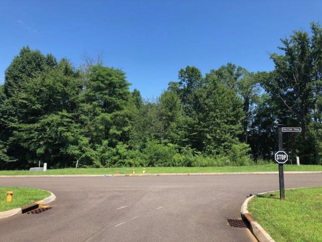 Falcon Trail, Vonore, TN 37885 (#1090087) :: Realty Executives
