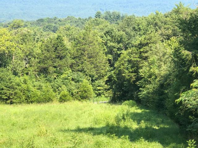 Upper East Valley Rd, Pikeville, TN 37367 (#1090089) :: Billy Houston Group