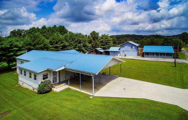 2141 Douglas Heights Rd, Dandridge, TN 37725 (#1090137) :: Venture Real Estate Services, Inc.