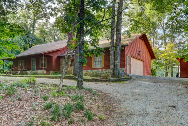 1223 Stonewall Jackson Dr Drive, Dandridge, TN 37725 (#1090161) :: Shannon Foster Boline Group