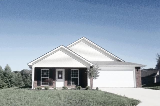 1440 Sally View Drive, Friendsville, TN 37737 (#1090172) :: Billy Houston Group