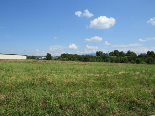 Lot 5 Sullivan Place Rd, Seymour, TN 37865 (#1090181) :: The Terrell Team