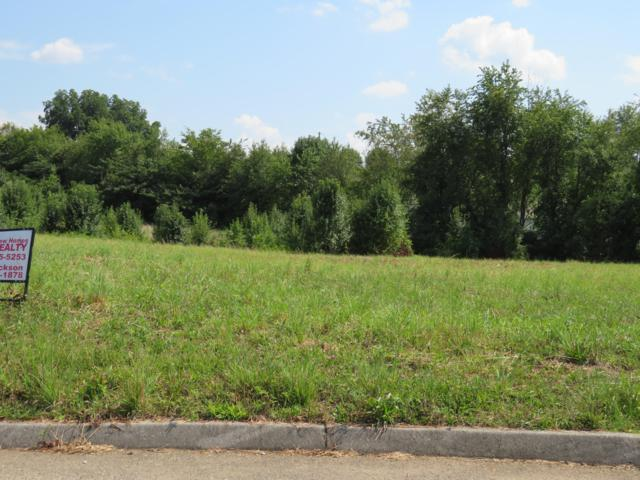 Lot 6 Sullivan Pl Rd, Seymour, TN 37865 (#1090186) :: The Terrell Team
