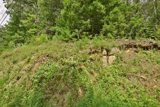 Lot 1 Block B Greystone Heights, Gatlinburg, TN 37738 (#1090197) :: Realty Executives