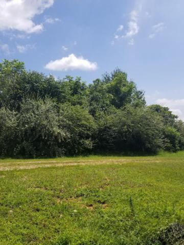 Lot #3 Wiley Prigmore Lane, Decatur, TN 37322 (#1090408) :: Realty Executives