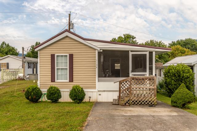 1134 Kinglet St, Townsend, TN 37882 (#1090418) :: Venture Real Estate Services, Inc.