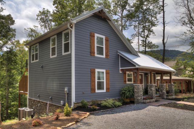 194 Cold Springs Trace, Townsend, TN 37882 (#1090448) :: Realty Executives