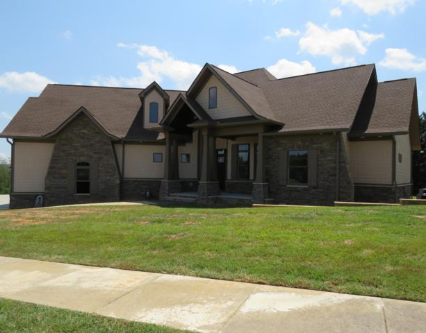 1436 Park Place Ave, Sevierville, TN 37862 (#1090757) :: Realty Executives