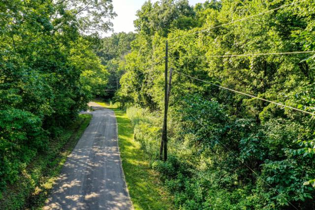 Sequoyah South Drive, Friendsville, TN 37737 (#1090772) :: Billy Houston Group