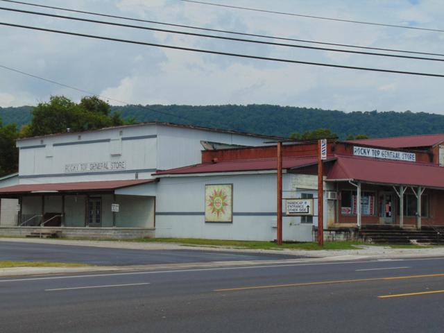 316 Ruritan Rd, Harriman, TN 37748 (#1090774) :: SMOKY's Real Estate LLC