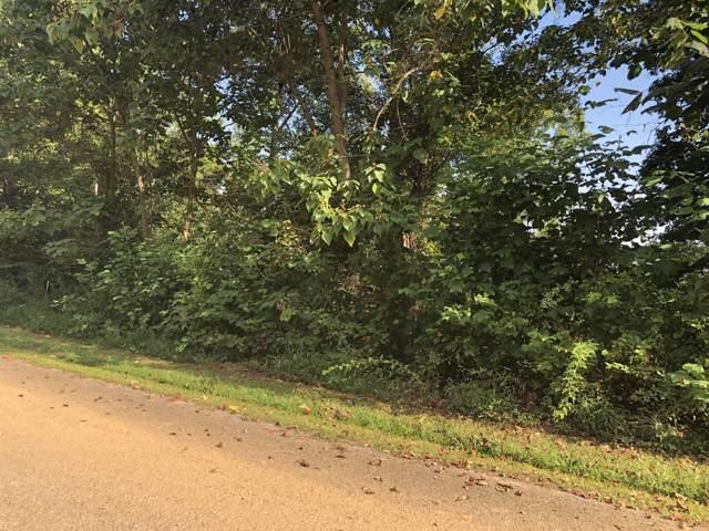 Meadow St, harrogate, TN 37752 (#1093765) :: Shannon Foster Boline Group