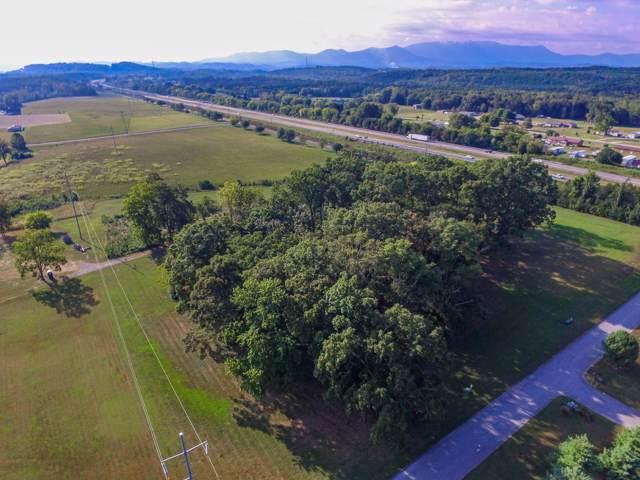 Wild Pear Trail, Dandridge, TN 37725 (#1094355) :: Shannon Foster Boline Group