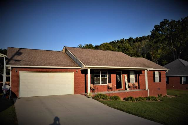 125 Mustang Lane, New Tazewell, TN 37825 (#1094585) :: Shannon Foster Boline Group