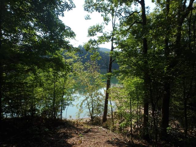Lot 36 Mountain Shores Rd, New Tazewell, TN 37825 (#1094603) :: Realty Executives