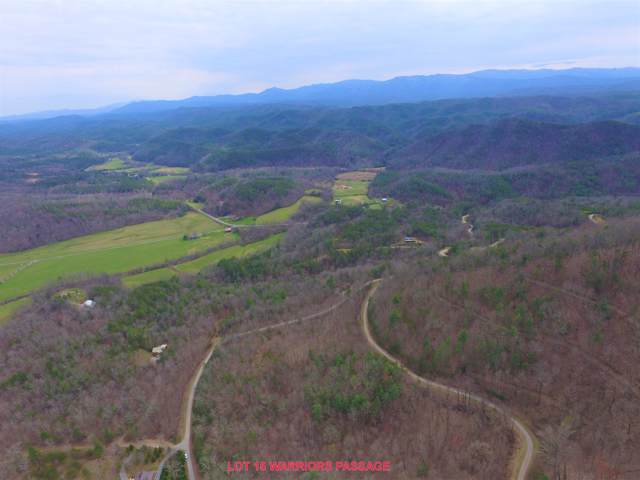 L15 Warriors Passage Drive, Tellico Plains, TN 37385 (#1094637) :: Realty Executives