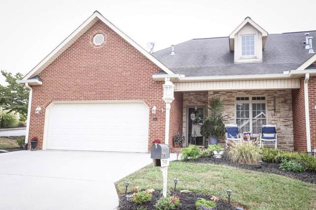 7510 School View Way, Knoxville, TN 37938 (#1094653) :: Realty Executives