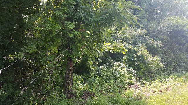 Buena Vista Lane, LaFollette, TN 37766 (#1094701) :: Shannon Foster Boline Group