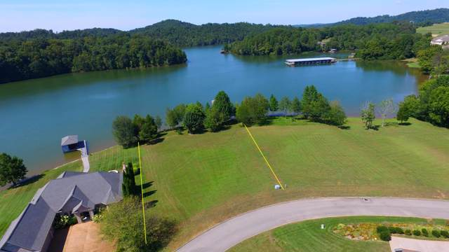 345 Pineberry Drive, Vonore, TN 37885 (#1094960) :: Venture Real Estate Services, Inc.