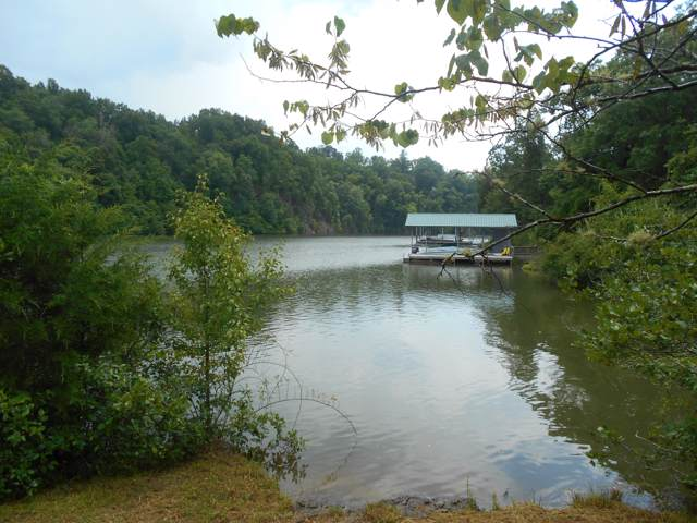 Scenic River Rd, Madisonville, TN 37354 (#1095028) :: SMOKY's Real Estate LLC