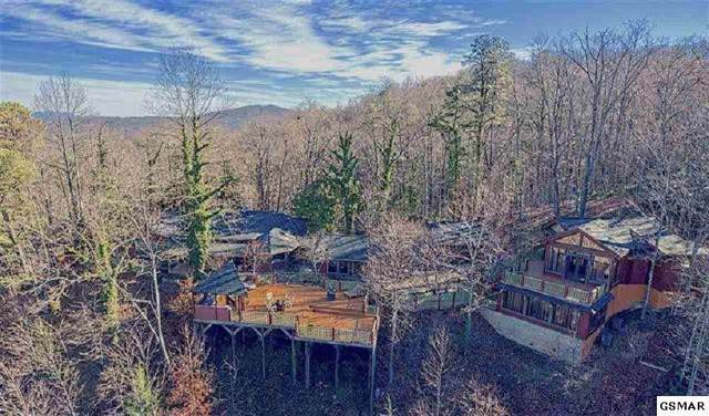 646 Jefferson Rd, Gatlinburg, TN 37738 (#1095059) :: SMOKY's Real Estate LLC