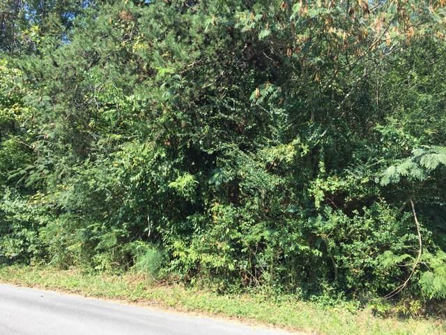 Humphrey Drive, Seymour, TN 37865 (#1095105) :: SMOKY's Real Estate LLC