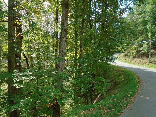 220 Cutter Gap Rd, Townsend, TN 37882 (#1095296) :: Venture Real Estate Services, Inc.